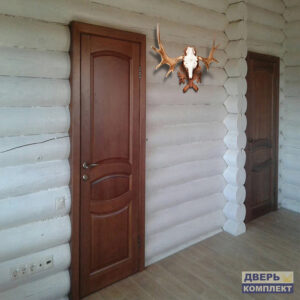 двери из массива в интерьере