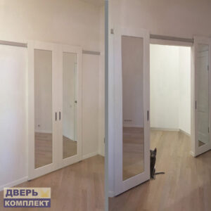 двери профиль дорс в интерьере